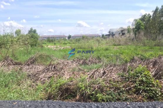 F2003036, ขายที่ดิน 1ไร่ 3งาน ต.สวนพริกไทย เชียงราก ปทุมธานี ที่ดินแปลงสวยเหมาะสำหรับลงทุน ฯลฯ